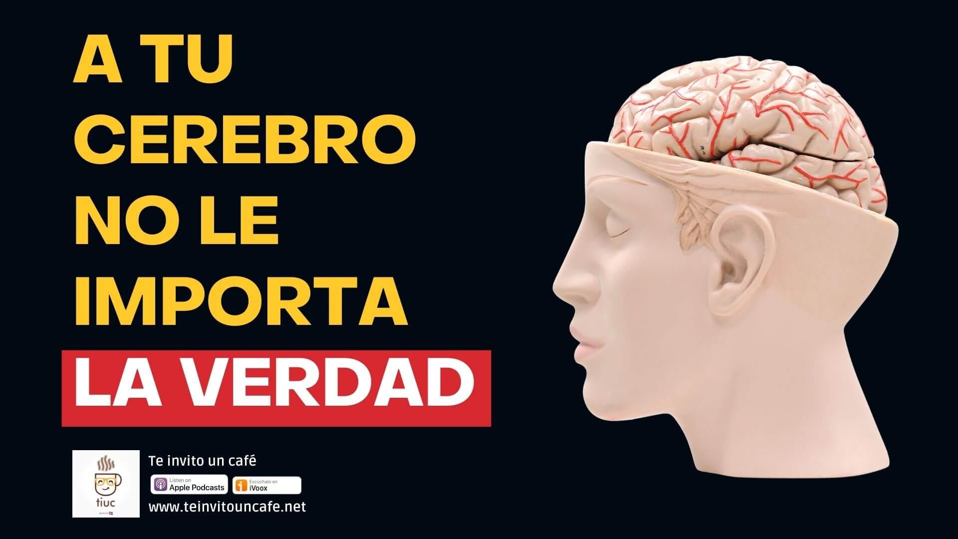 Al Cerebro NO le Interesa la Verdad